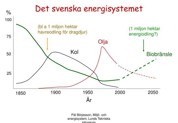 Pål Börjesson, Miljö- och energisystem, Lunds Tekniska Högskola
