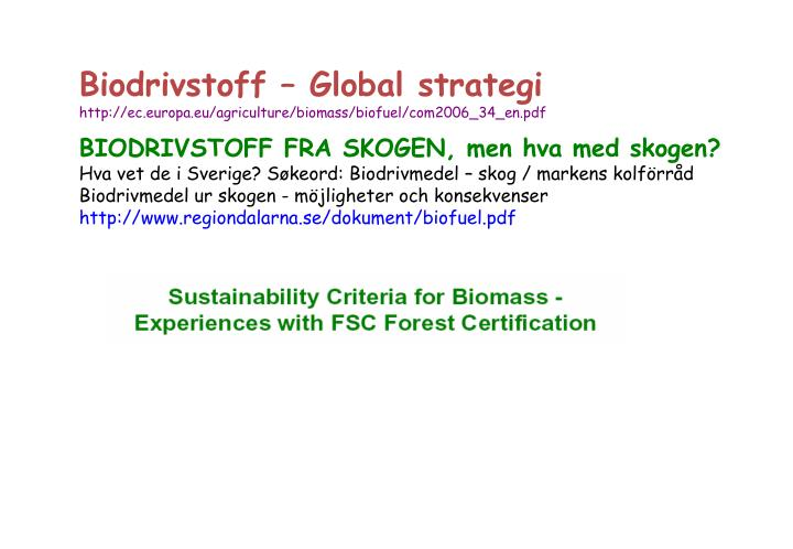 Biodrivstoff – Global strategi