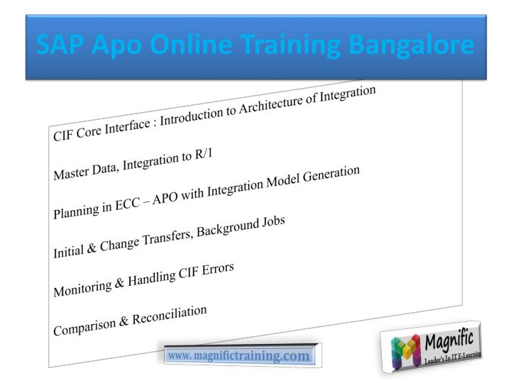 SAP Apo Online Training Bangalore
