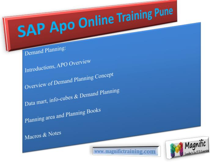 Sap apo online training pune