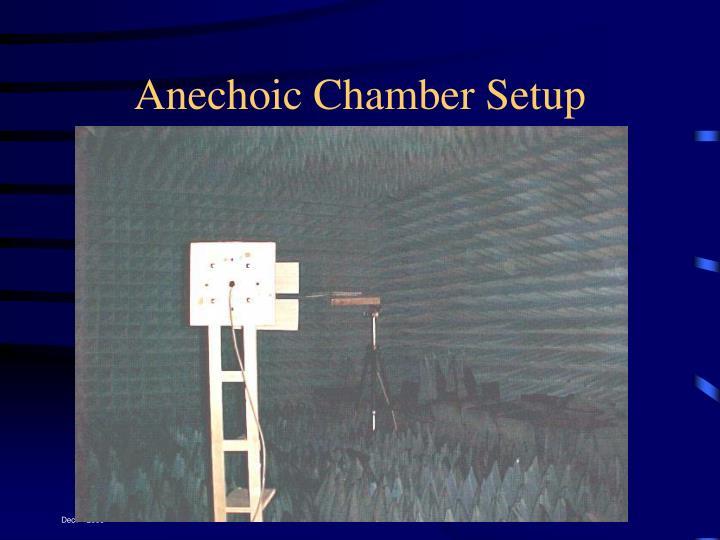 Anechoic Chamber Setup