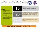 level two emerging leaders programme