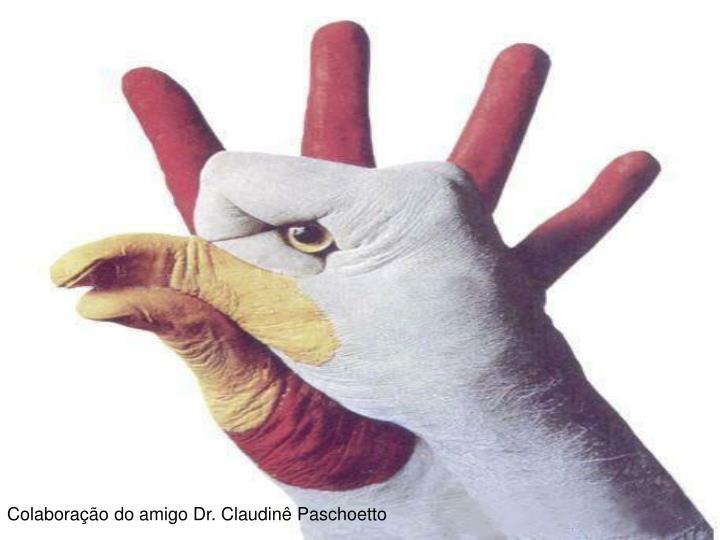 Colaboração do amigo Dr. Claudinê Paschoetto