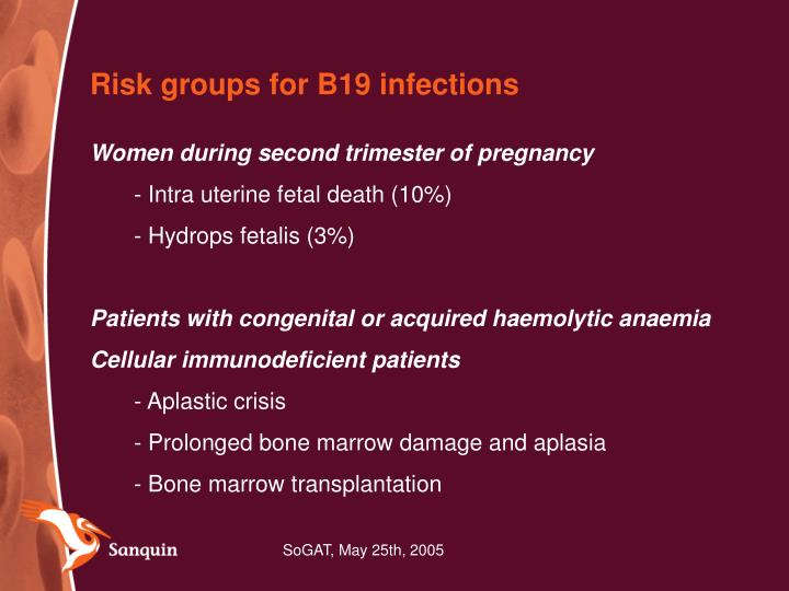 Risk groups for B19 infections