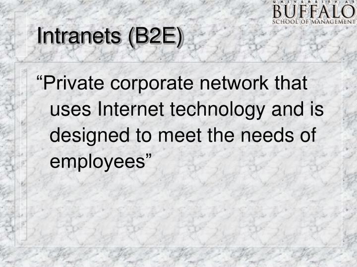 Intranets (B2E)