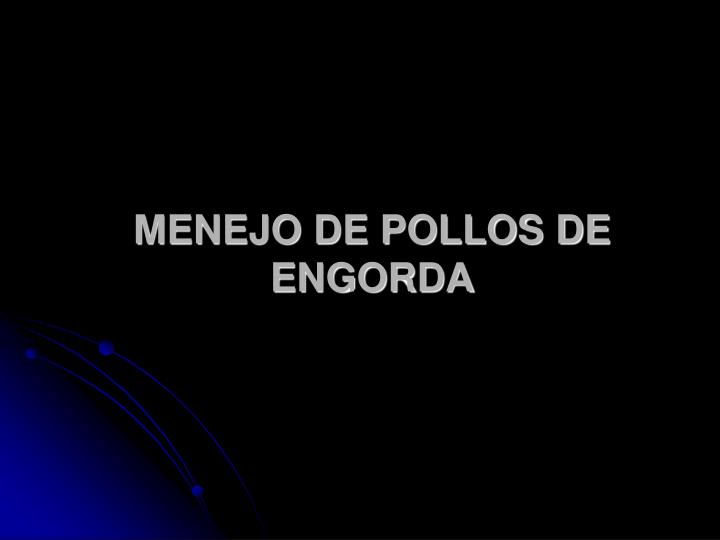 MENEJO DE POLLOS DE ENGORDA