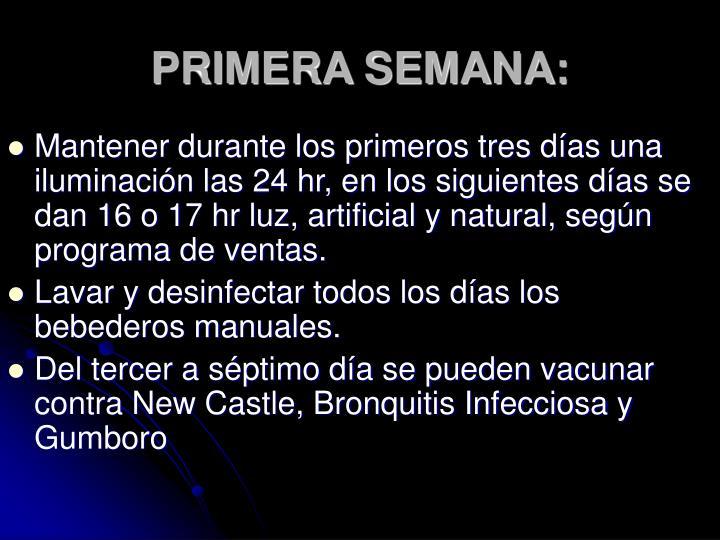 PRIMERA SEMANA: