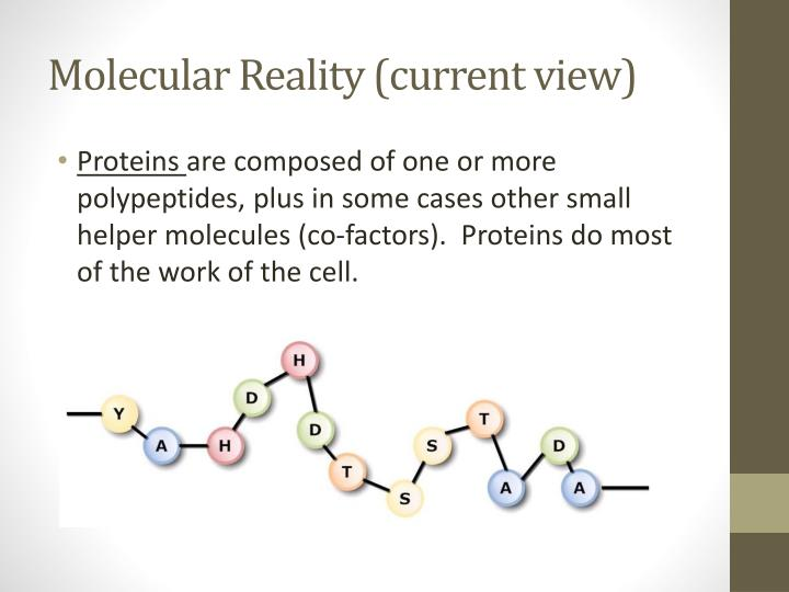 Molecular Reality (current view)