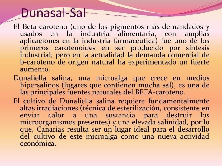 Dunasal