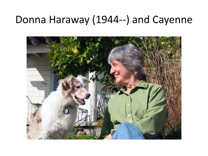 Donna Haraway (1944--) and Cayenne