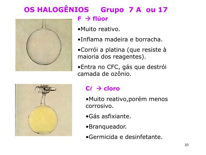 OS HALOGÊNIOS     Grupo  7 A  ou 17