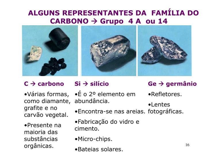 ALGUNS REPRESENTANTES DA  FAMÍLIA DO           CARBONO