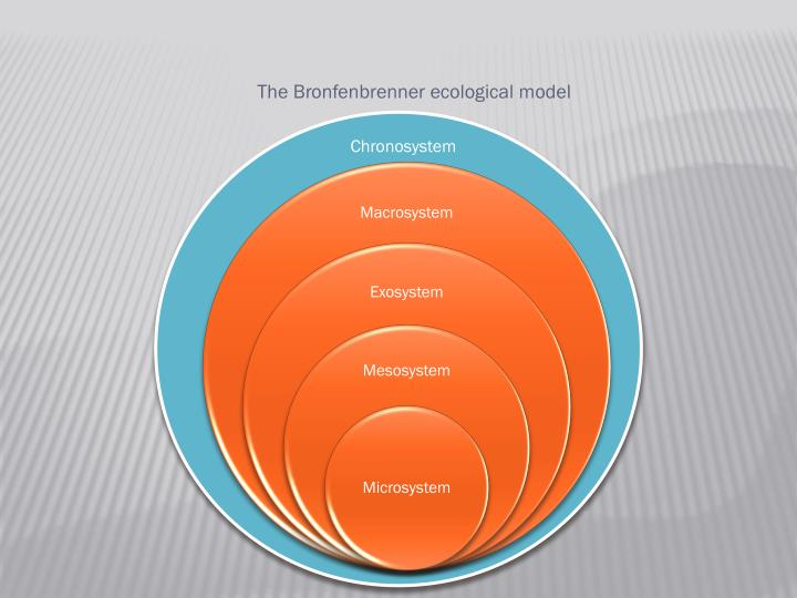 The Bronfenbrenner ecological model