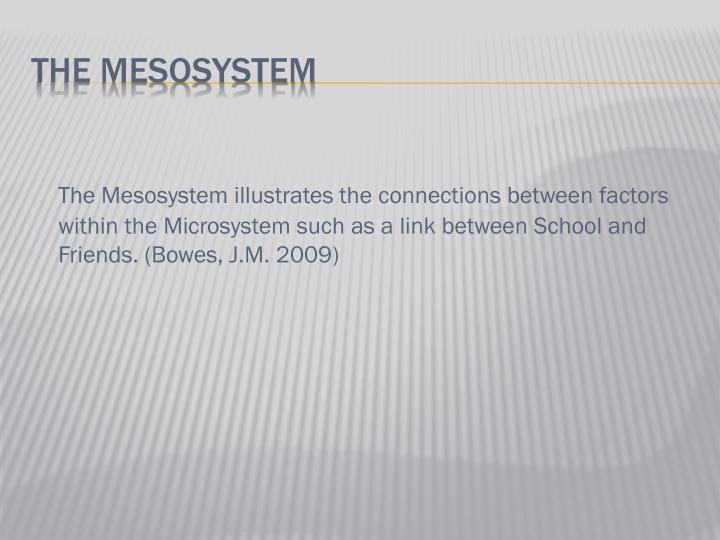 The Mesosystem illustrates the connections between factors within the Microsystem such as a link between School and Friends. (Bowes, J.M. 2009)