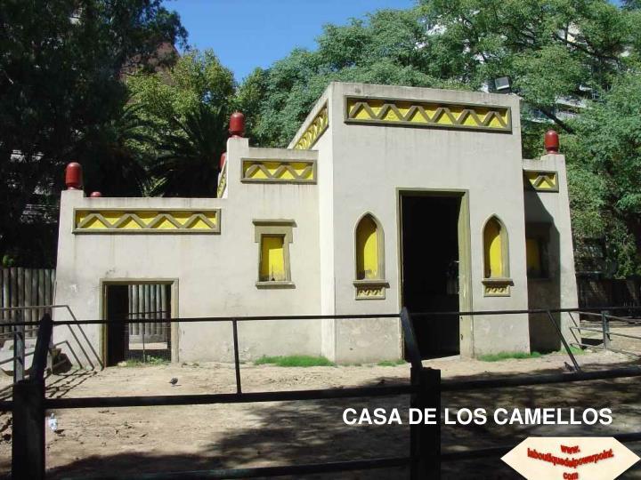 CASA DE LOS CAMELLOS