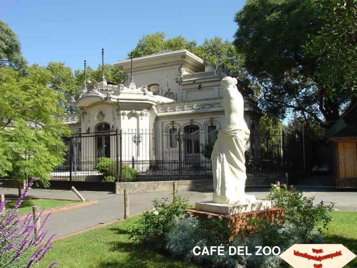 CAFÉ DEL ZOO
