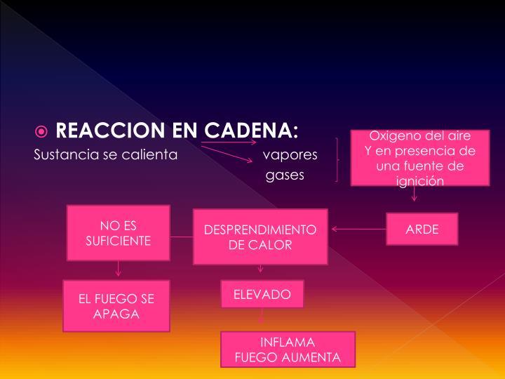 REACCION EN CADENA: