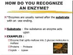 how do you recognize an enzyme