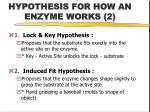 hypothesis for how an enzyme works 2