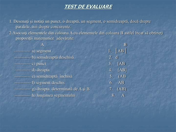 TEST DE EVALUARE