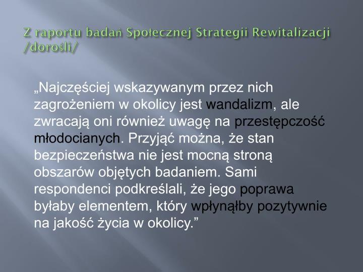 Z raportu badań Społecznej Strategii Rewitalizacji