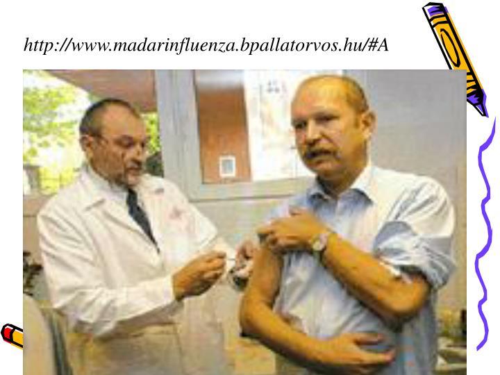 http://www.madarinfluenza.bpallatorvos.hu/#A