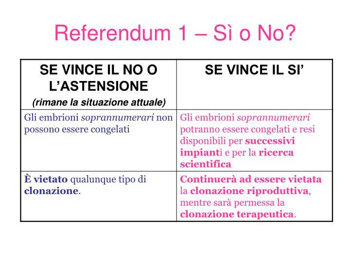 Referendum 1 – Sì o No?