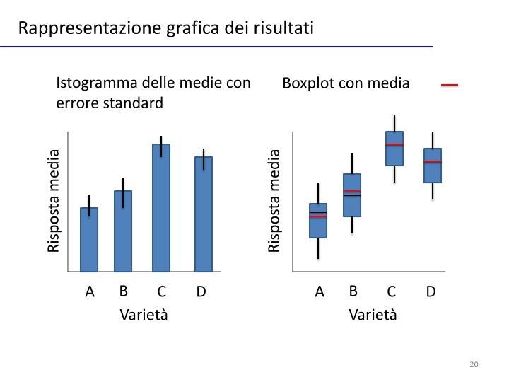 Rappresentazione grafica dei risultati