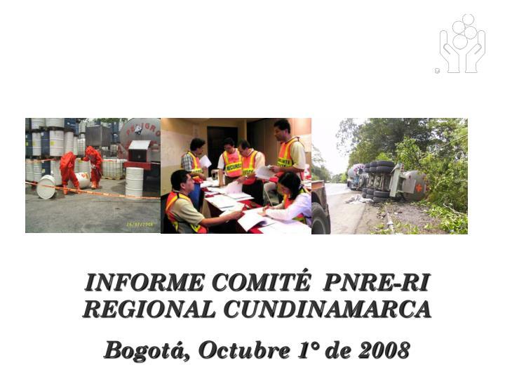 INFORME COMITÉ  PNRE-RI REGIONAL CUNDINAMARCA