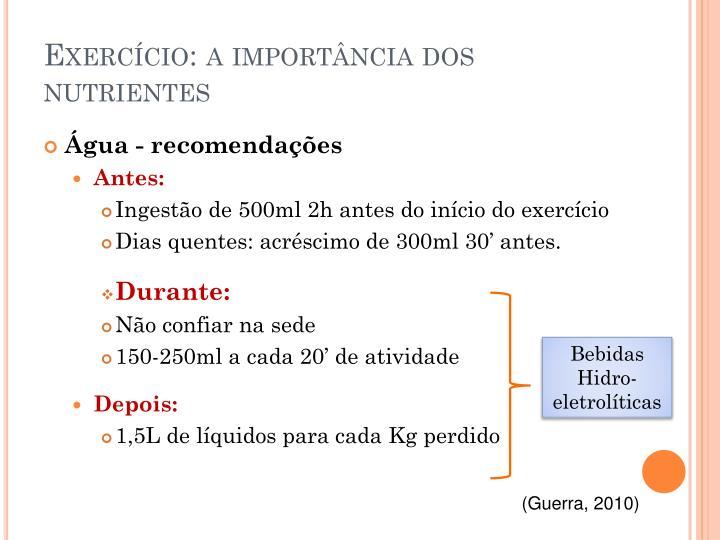 Exercício: a importância dos nutrientes