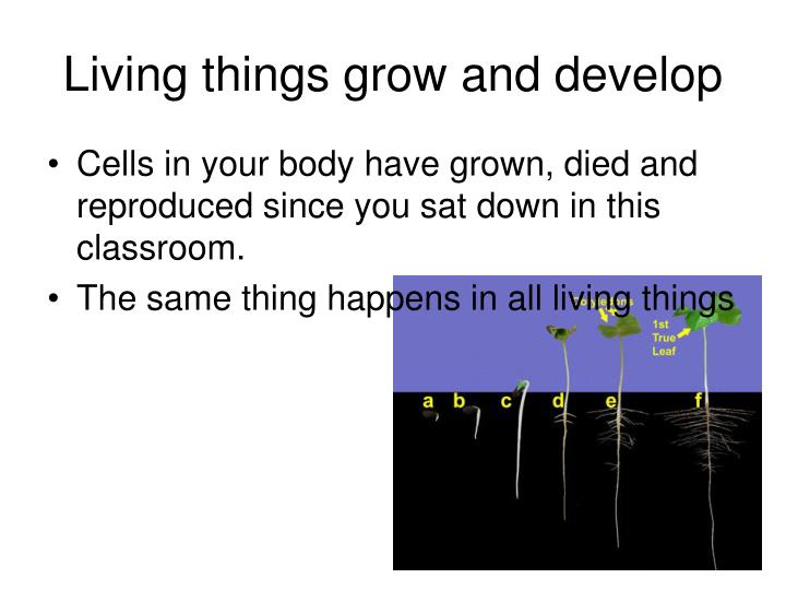 Living things grow and develop