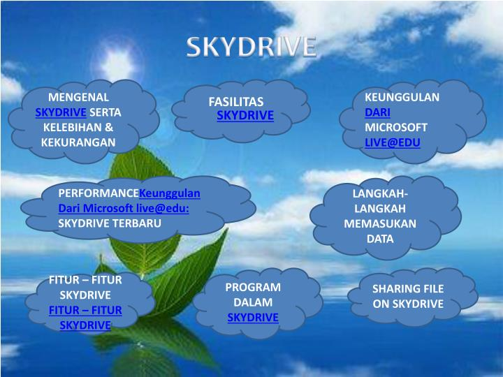 Skydrive1