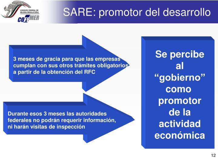 SARE: promotor del desarrollo
