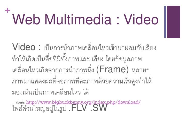 Web Multimedia :