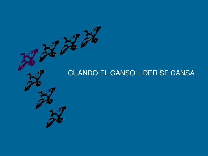 CUANDO EL GANSO LIDER SE CANSA...