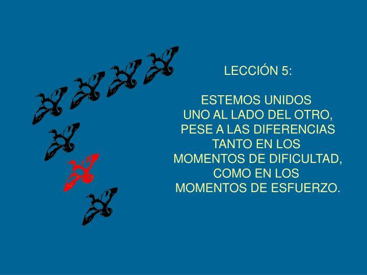 LECCIÓN 5: