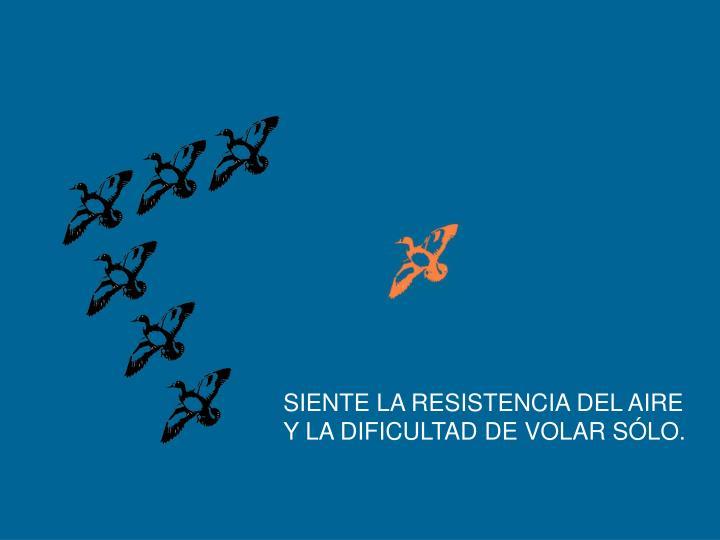 SIENTE LA RESISTENCIA DEL AIRE