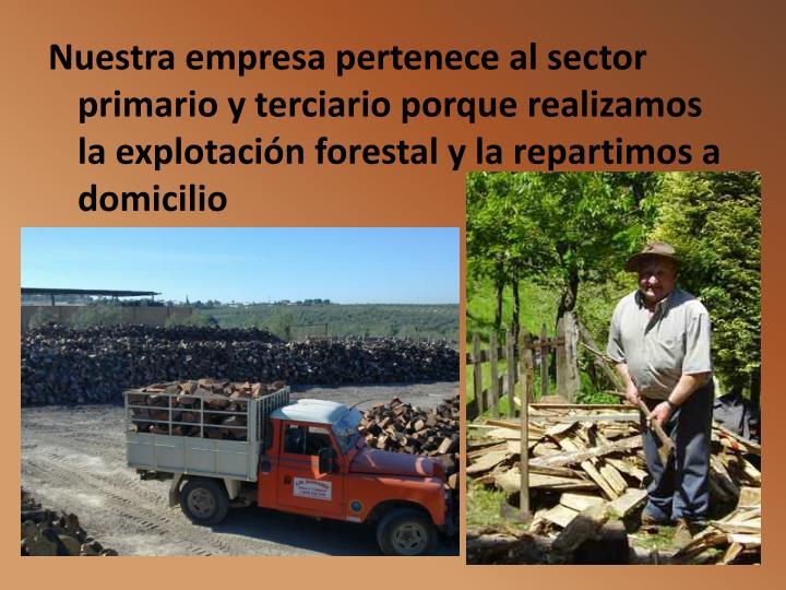 Nuestra empresa pertenece al sector primario y terciario porque realizamos la explotación forestal y la repartimos a domicilio