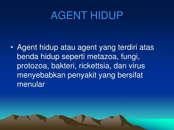 AGENT HIDUP