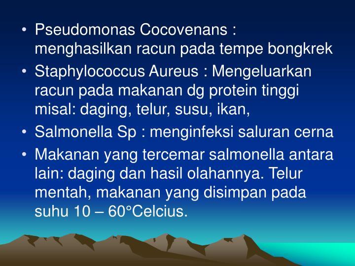 Pseudomonas Cocovenans : menghasilkan racun pada tempe bongkrek
