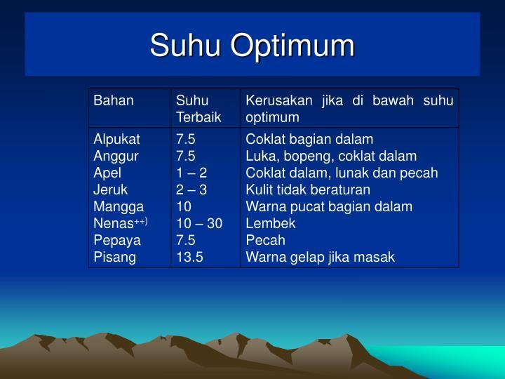 Suhu Optimum