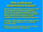 what is a recovery implementation program