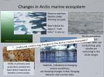 changes in arctic marine ecosystem