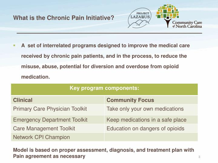 What is the Chronic Pain Initiative?