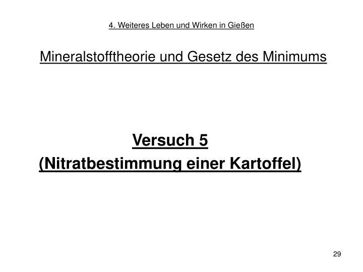 4. Weiteres Leben und Wirken in Gießen