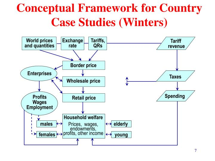 Conceptual Framework for Country Case Studies (Winters)