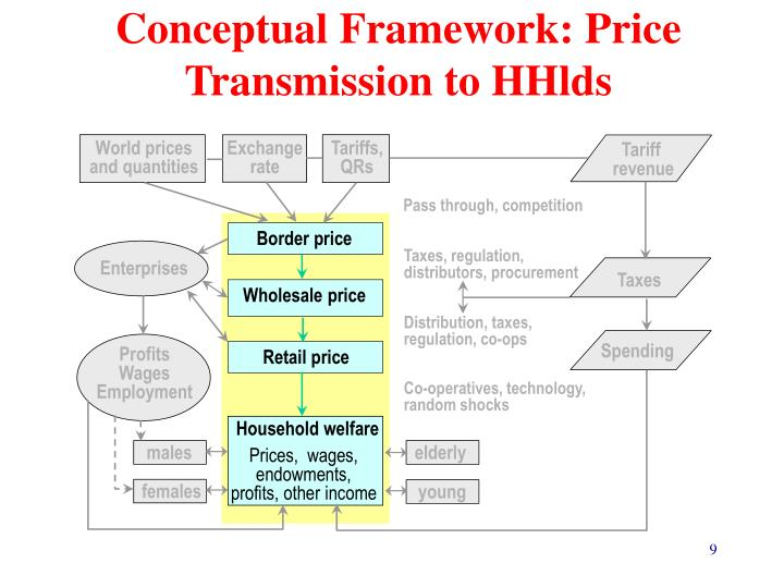 Conceptual Framework: Price Transmission to HHlds