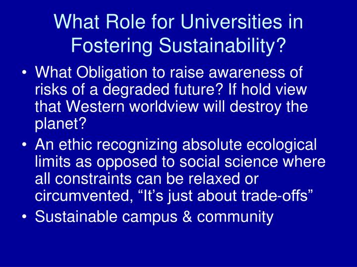 What Role for Universities in Fostering Sustainability?