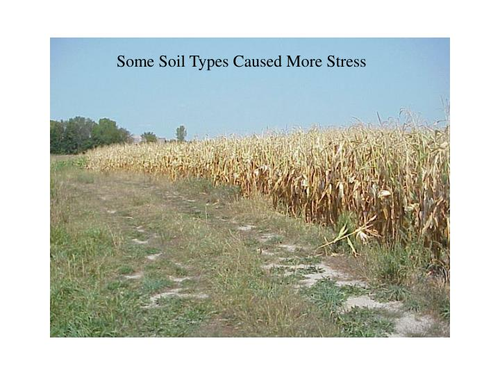 Some Soil Types Caused More Stress