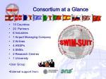 consortium at a glance